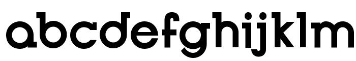 Opificio Serif Bold Font LOWERCASE