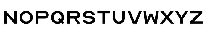 OpticianSans-Regular Font UPPERCASE