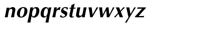 Optima Cyrillic Bold Oblique Font LOWERCASE
