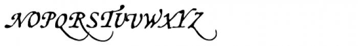 Opsmarckt Alternates Font UPPERCASE