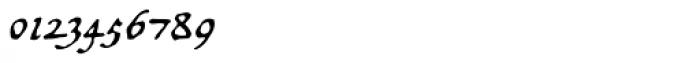 Opsmarckt Basic Font OTHER CHARS