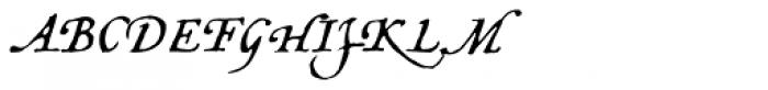 Opsmarckt Basic Font UPPERCASE