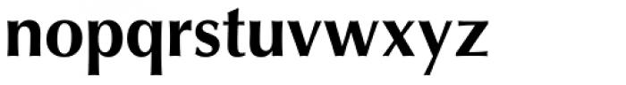 Optima Pro Bold Font LOWERCASE
