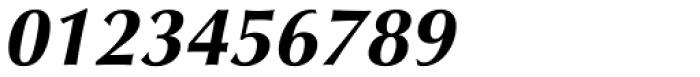 Optima Pro Cyrillic Bold Oblique Font OTHER CHARS