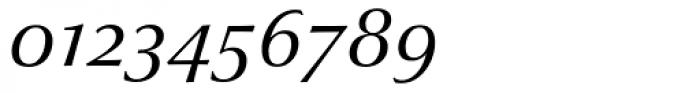 Optima nova Italic OsF Font OTHER CHARS