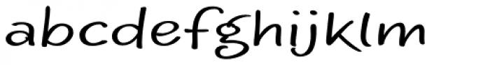 Optiscript EF Regular Alt Font LOWERCASE