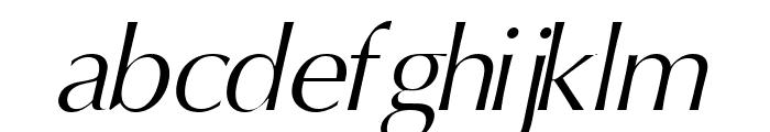 Oregon LDO Book Oblique Font LOWERCASE