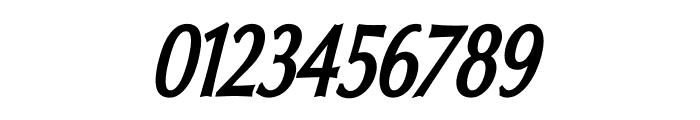 Oregon LDO Condensed Bold Oblique Font OTHER CHARS
