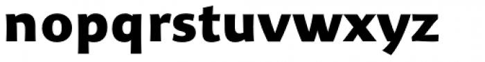Organon Sans Black Font LOWERCASE