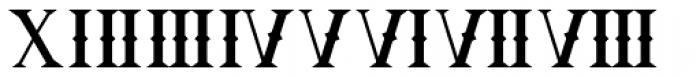 Ornamental Versals Black Font OTHER CHARS