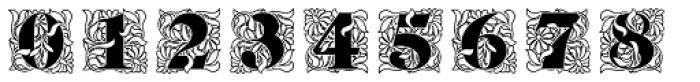Ornate Initials Style One Font OTHER CHARS