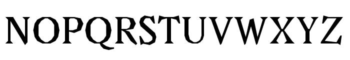 Avara Bold Font UPPERCASE