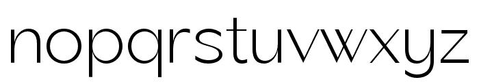 George Neue Display Regular Font LOWERCASE