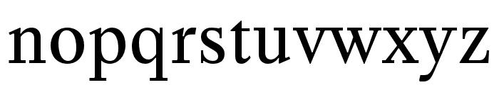 Happy Times NG Regular Font LOWERCASE