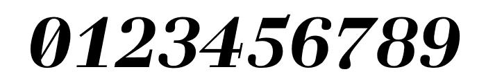 Laplace Mono Bold Italic Font OTHER CHARS