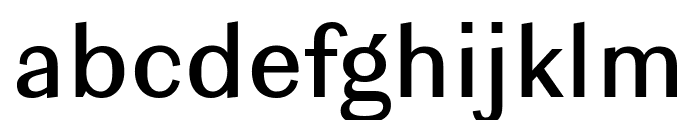 Ludwig Normal Normal Font LOWERCASE