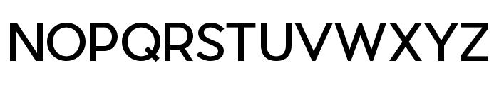 Pier Sans Regular Font UPPERCASE