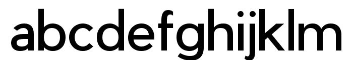 Pier Sans Regular Font LOWERCASE