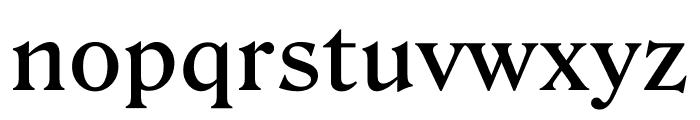 Roslindale Text Medium Font LOWERCASE