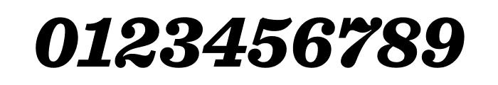 Sentinel Black Italic Font OTHER CHARS