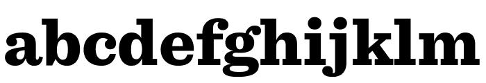 Sentinel Black Font LOWERCASE