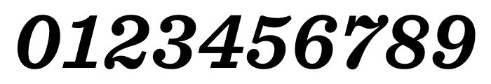 Sentinel ScreenSmart Bold Italic Font OTHER CHARS