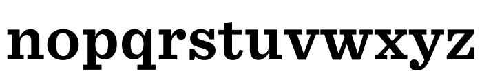 Sentinel ScreenSmart Bold Font LOWERCASE