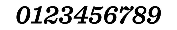 Sentinel Semibold Italic Font OTHER CHARS
