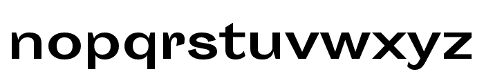 Sporting Grotesque Bold Font LOWERCASE