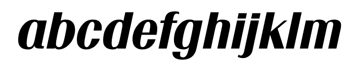 TFRenoir Black Italic Font LOWERCASE
