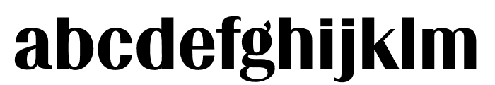 TFRenoir Black Font LOWERCASE