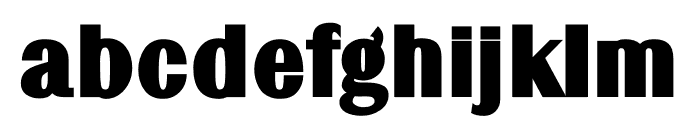 TFRenoir Extra Heavy Font LOWERCASE