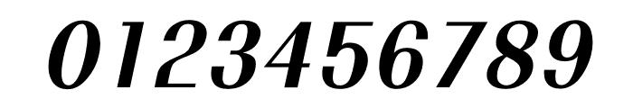 TFRenoir Extrabold Italic Font OTHER CHARS