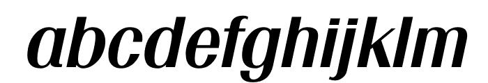TFRenoir Extrabold Italic Font LOWERCASE