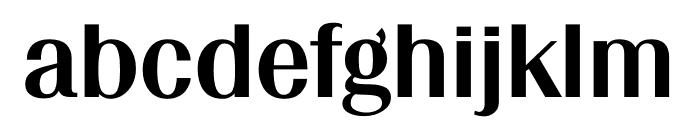 TFRenoir Extrabold Font LOWERCASE