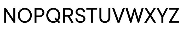 TT Commons Variable Font UPPERCASE