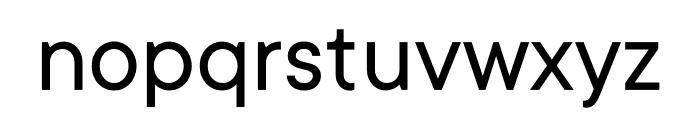TT Commons Variable Font LOWERCASE