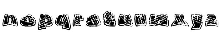 OverRide DSG Font LOWERCASE
