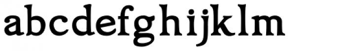 Oxonia Roman Bold Font LOWERCASE