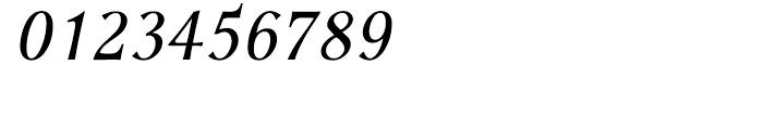 P22 Foxtrot Sans Italic Font OTHER CHARS