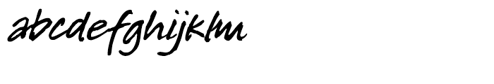 P22 Freely Regular Font LOWERCASE