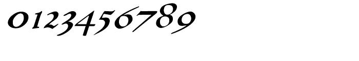 P22 Larkin Regular Font OTHER CHARS