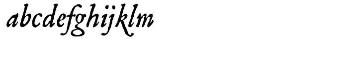 P22 Mayflower Italic Font LOWERCASE