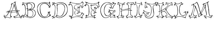 P22 Tulda Regular Font UPPERCASE