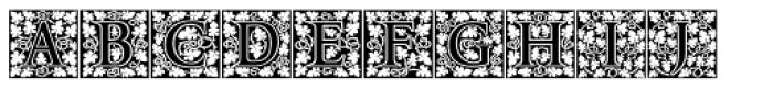 P22 Amelia Jayne Fill Initials Font LOWERCASE
