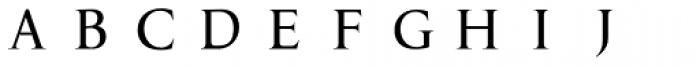 P22 Amelia Jayne Hard Initials Font LOWERCASE