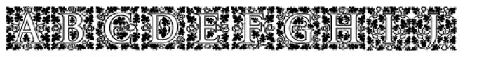P22 Amelia Jayne Open Initials Font UPPERCASE