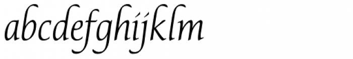 P22 Avocet Light Pro Font LOWERCASE