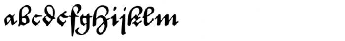 P22 Civilite No 14 Historic Font LOWERCASE