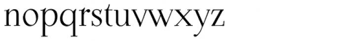 P22 Dyrynk Roman Font LOWERCASE